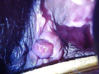 inside wifes pink hole